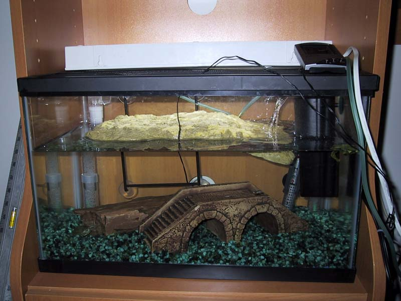 Turtle tank undergravel filter how to hook your canister for Diy gravel filter
